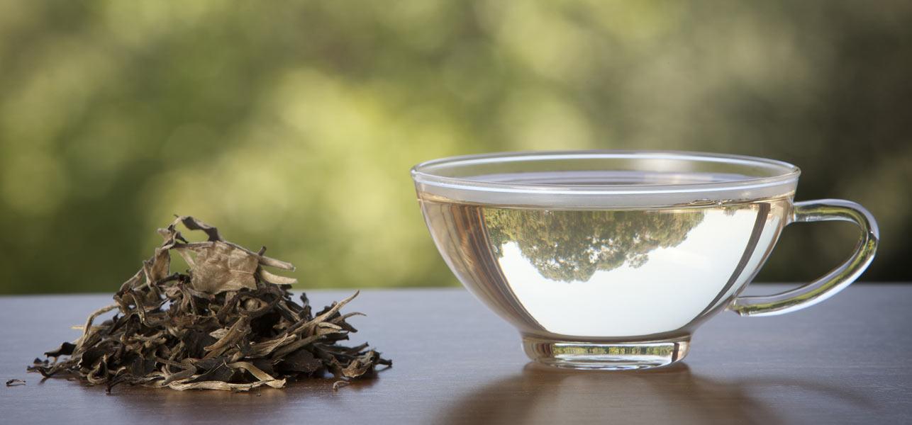 Az Origins Tökéletes Világa: Intenzíven Hidratáló Testápoló Krém Fehér Teával A Perfect World Termékcsaládból